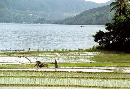 Pulau Samosir, Lake Toba, Sumatra, Indonesien