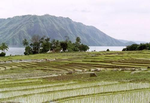 Pulau Somosir, Lake Toba, Sumatra, Indonesien